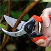 secateurs_01